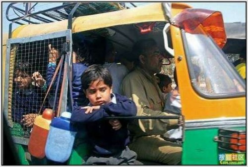 Ĺkolski autobus Indija 30