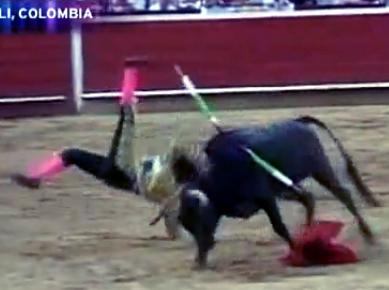 boy matador