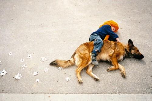 JahaÄŤ psa